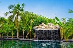 Maldives. Piscina con pequeña caída en jardín tropical imágenes de archivo libres de regalías