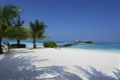 Maldives plaża Obrazy Stock