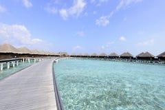 Maldives plaża fotografia royalty free