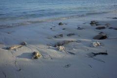 Maldives plaża Obrazy Royalty Free