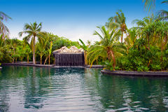 Maldives. Pool with small fall in tropical garden Stock Photography