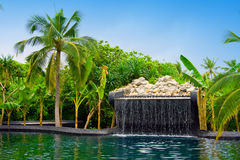 Maldives. Pool with small fall in tropical garden Royalty Free Stock Images