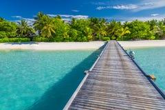 Maldives raju plaży sztandar Perfect tropikalna wyspa Piękni drzewka palmowe i tropikalna plaża Markotny niebieskie niebo i błęki fotografia stock