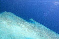 Maldives reef Stock Images