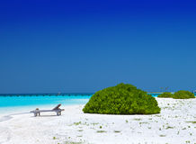 Maldives. A sandy beach and an ocean coast. Stock Image