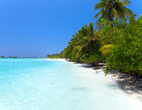 Maldives. A sandy beach and an ocean coast. Stock Photo
