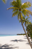 Maldives seascape. On reethi rah island (One & Only resort Stock Image