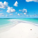 MALDIVES sky and sea. Lle sandbar maldives, sky variable, with coconut stock images