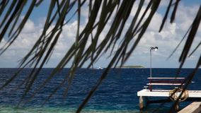 Maldives, a speedboat is sailing over the ocean stock footage