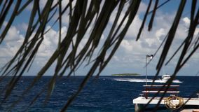 Maldives, a speedboat is sailing over the ocean stock video footage