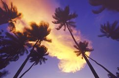 Maldives sun set Stock Photography