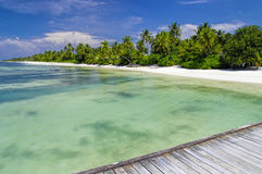 Maldives - sunny tropical lagoon Royalty Free Stock Photo