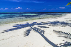 Maldives - sunny tropical lagoon Royalty Free Stock Photography