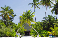 Maldives - sunny tropical lagoon  Stock Photos