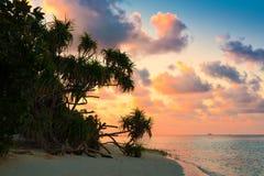 Maldives, sunset Stock Image