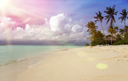 Maldives. Sunshine through clouds light the beach with palm trees Royalty Free Stock Photo