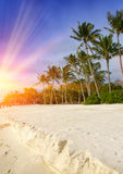 Maldives. Sunshine through clouds light the beach with palm trees Stock Photography