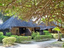 Maldives thatched bungalows royalty free stock image