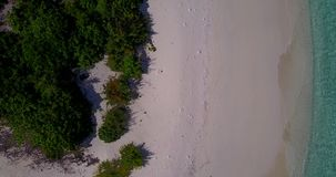 V08751 maldives tropical island and blue sea with drone aerial flying view on a beach with white sand and beautiful sky. Maldives tropical island and blue sea stock video