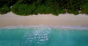 V08653 maldives tropical island and blue sea with drone aerial flying view on a beach with white sand and beautiful sky. Maldives tropical island and blue sea stock video footage