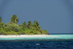 Maldives tropical paradise beach crystal water coconut tree island Royalty Free Stock Photos