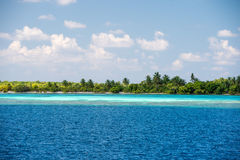 Maldives tropical paradise beach crystal water coconut tree island Royalty Free Stock Photo
