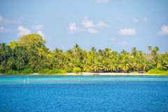 Maldives tropical paradise beach crystal water coconut tree island Royalty Free Stock Images