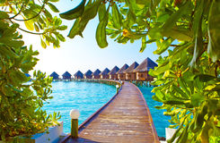 Maldives.Villa on piles on water. Landscape in a sunny day Royalty Free Stock Photo