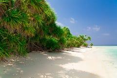 Maldives, white sand, palms stock image