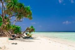 Maldives, white sand, palms stock photos