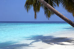 The maldives Royalty Free Stock Photography