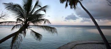 Maldives wyspa obrazy stock