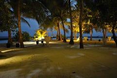 Maldives wyspa nigh pod palmami Zdjęcie Stock