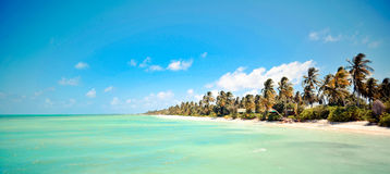 Maldives wyspy plaża Fotografia Royalty Free