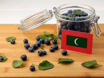Maldives zaznaczają na drewnianej desce z czarnymi jagodami na whi obraz stock