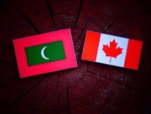 Maldives zaznaczają z kanadyjczyk flaga na drzewnym fiszorku odizolowywającym obraz royalty free