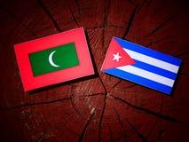 Maldives zaznaczają z kubańczyk flaga na drzewnym fiszorku odizolowywającym obrazy royalty free