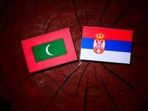 Maldives zaznaczają z serb flaga na drzewnym fiszorku odizolowywającym obraz royalty free