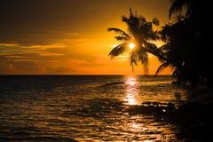 maldivian日落 库存照片