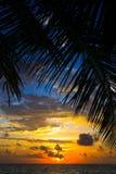 maldivian日落 库存图片