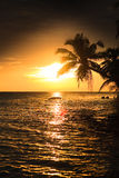 maldivian заход солнца Стоковые Фото