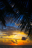 maldivian заход солнца Стоковое Изображение