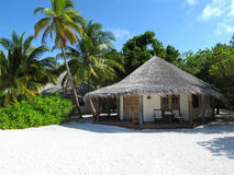 Maldivian beach bungalow. With coconut trees royalty free stock photography