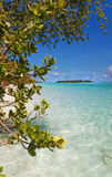 Maldivian beach scene. Beautiful sunny day at the beach and blue shallow lagoon framed by the tropical vagentation Stock Image