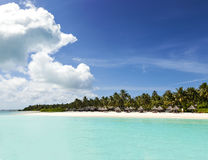 Maldivian coast travel to paradise Royalty Free Stock Image