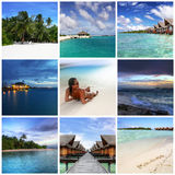 Maldivian memories Stock Images