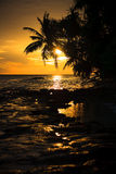 maldivian solnedgång royaltyfria bilder