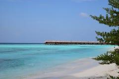Maldivian strand stock fotografie