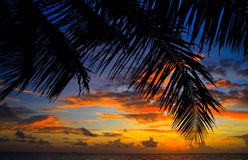 Maldivian Sunset Royalty Free Stock Image