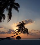 Maldivian sunset. The sun setting Velavaru Maldives Stock Image